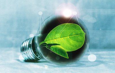 Une ampoule alimentée avec de l'énergie renouvelable