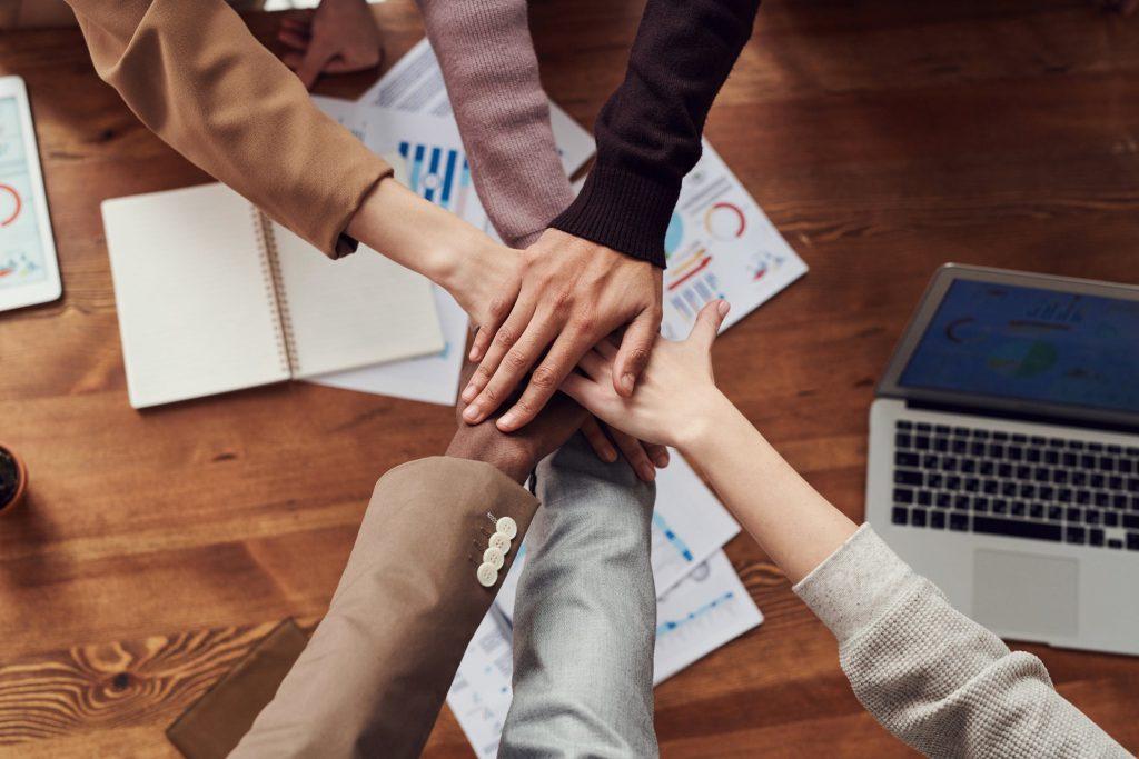 Cohésion d'équipe lors d'une activité de team building